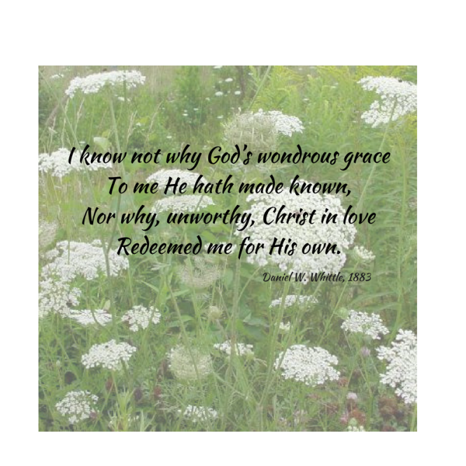 I know not why God_s wondrous graceTo me He hath made known,Nor why, unworthy, Christ in loveRedeemed me for His own.